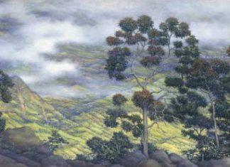 Ariza pintor de los Andes