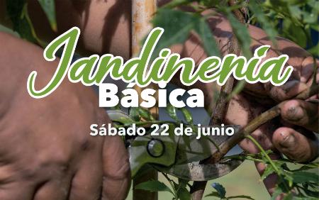 Taller de jardinería básica en el Jardín Botánico