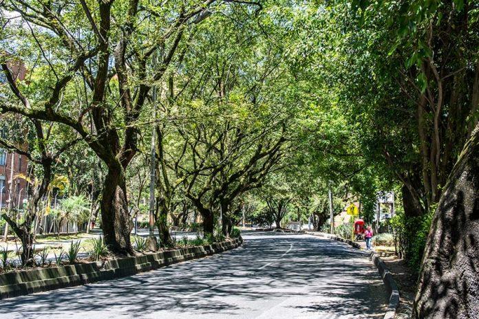 Metroplús tiene un año para reactivar obras en Envigado