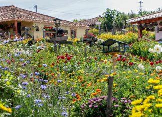 Santa Elena Feria de Flores 2019
