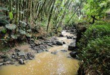 La contaminación de la quebrada La Paulita