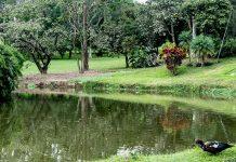 Especialistas valoran ofrenda ambiental de Club El Rodeo a la región