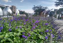 fotográfica sobre el cuidado del río Aburrá-Medellín