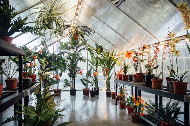 Exposición pasado tiempo futuro en El Museo de Arte Moderno