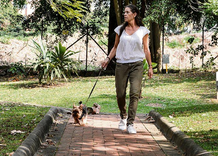 ¿Quiere tener mascota? considere (y esta es mi invitación) no comprar: adopte, cuide y esterilice y no apoye el tráfico de fauna silvestre!