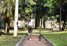 La sostenibilidad y las mascotas