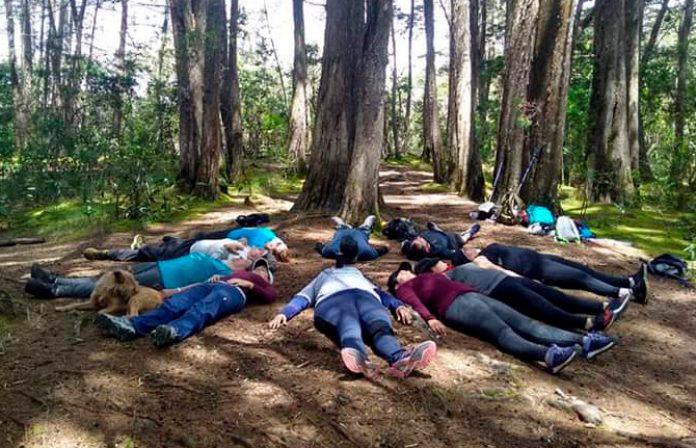 La meditación en movimiento es una técnica milenaria, pero poco difundida. Jordí Duque y Daniel Cardona la experimentan hace cuatro años con grupos de caminantes en el país.