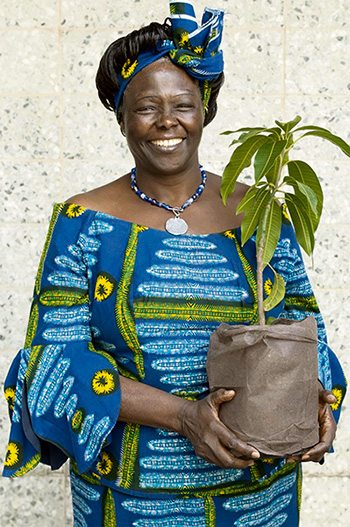 Wangari Maathai. Foto cortesía AllCreation.org