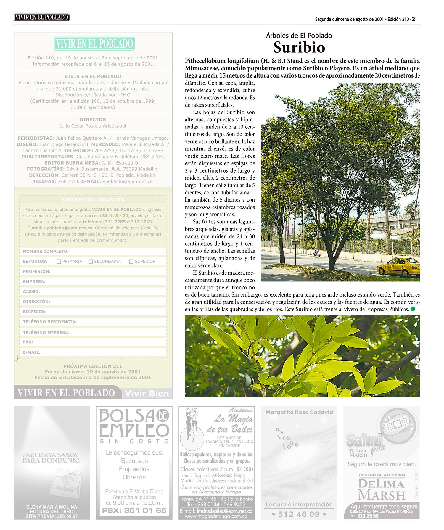 En cada edición se destacaba árboles como este suribio, vecino, para la época, de Simesa y del Vivero de EPM, hoy Ciudad del Río y Telemedellín.