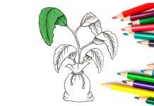 Educación desarrollo sostenible