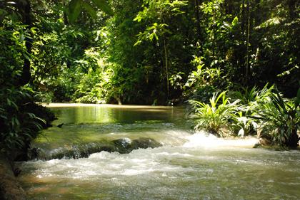 santuarios de biodiversidad
