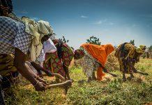 Igualdad de género y sostenibilidad
